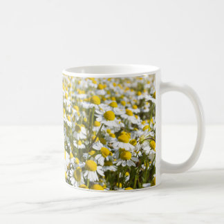 Chamomile Field, Hungary Coffee Mug