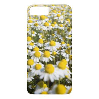 Chamomile Field, Hungary iPhone 8 Plus/7 Plus Case