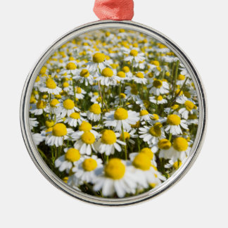 Chamomile Field, Hungary Silver-Colored Round Ornament