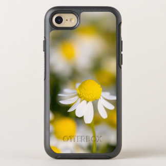 Chamomile flower close-up, Hungary OtterBox Symmetry iPhone 7 Case