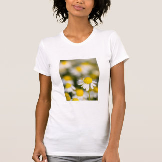 Chamomile flower close-up, Hungary T-Shirt