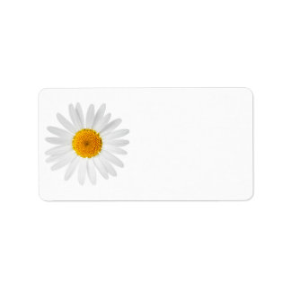 Chamomile Flower Isolated On White Background Personalized Address Labels