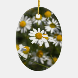 Chamomile flowers ceramic oval ornament