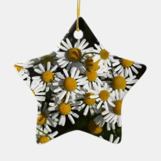 Chamomile flowers ceramic star ornament