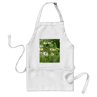 chamomile Flowers Standard Apron