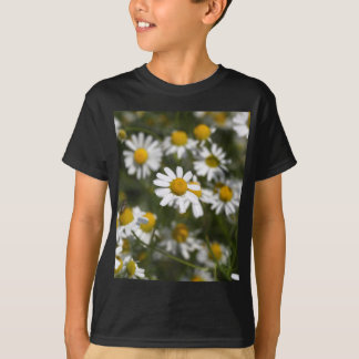 Chamomile flowers T-Shirt