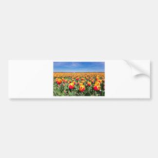 Champ des tulipes jaunes rouges avec le ciel bleu autocollant de voiture
