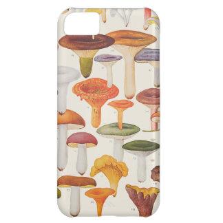 Champignons de champignons de paris de Les Coques iPhone 5C