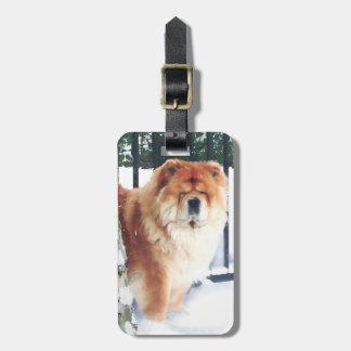 CHANCE & CHLOE heARTdog tag