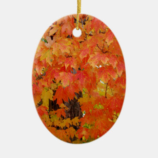 CHANGE IS COMING CERAMIC OVAL ORNAMENT