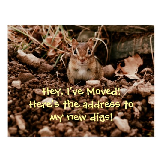 Change of Address Chipmunk Postcard