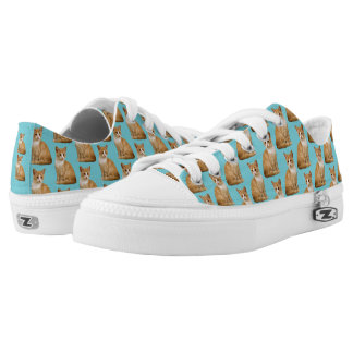 CHANGEABLE BACKGROUND COLOR-CAT Low-Top SNEAKERS