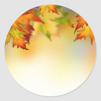 Changing Leaves Round Sticker