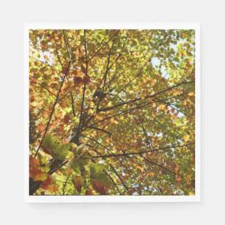 Changing Maple Tree Green and Gold Autumn Paper Napkin