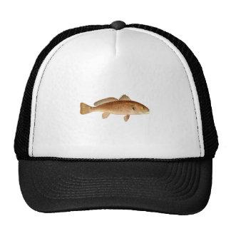 Channel Bass Logo Hat