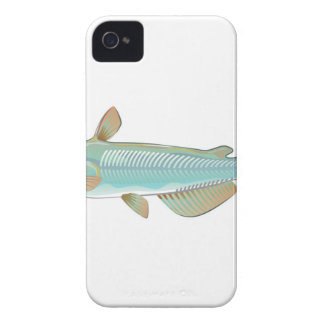 Channel catfish game fish farm fish seafood market Case-Mate iPhone 4 case