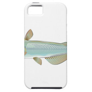 Channel catfish game fish farm fish seafood market iPhone 5 covers