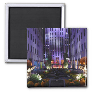 Channel Gardens Fifth Avenue New York City NYC Magnet