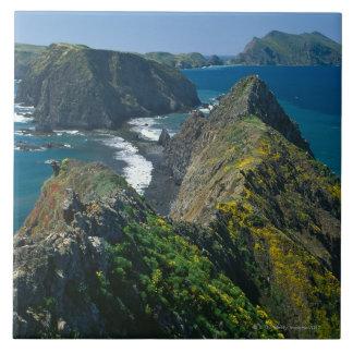 Channel Islands National Park, Southern Tile
