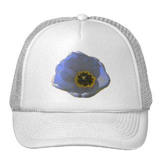 Chapeau bleu et jaune de tulipe casquettes