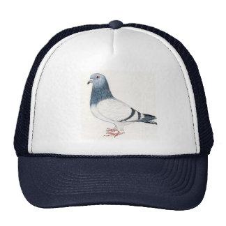 Chapeau d art d oiseau de pigeon casquettes de camionneur