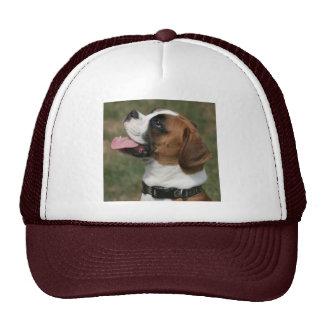 Chapeau de camionneur de photo de chien de boxeur casquette de camionneur