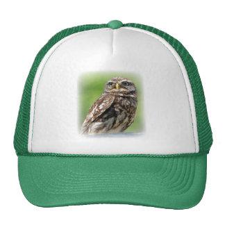 Chapeau de photo d'oiseau de petit hibou beau, cas casquette de camionneur