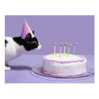 Chapeau de port d'anniversaire de chat soufflant cartes postales