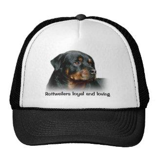 Chapeau de rottweiler casquettes