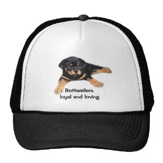 Chapeau de rottweiler casquette