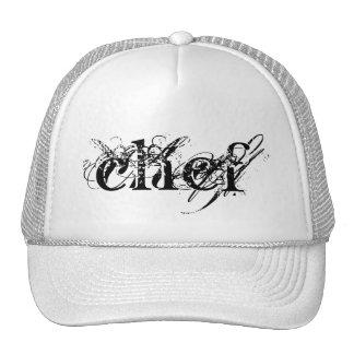 Chapeau du camionneur du chef casquettes de camionneur