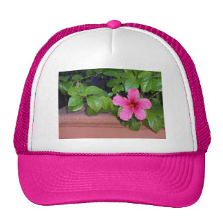 Chapeau rose de photo de fleur casquettes de camionneur