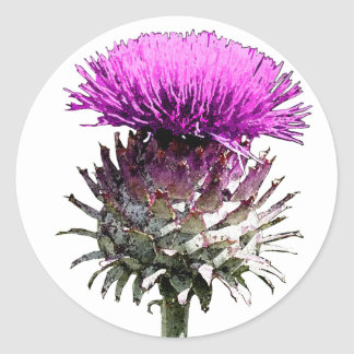 Chardon écossais sticker rond