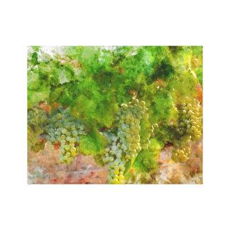 Chardonnay Grapes on the Vine Canvas Print
