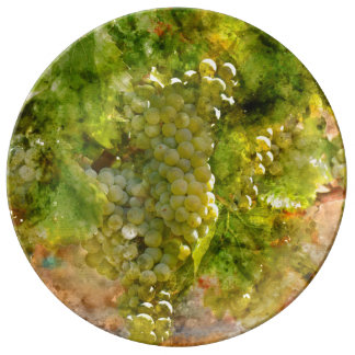 Chardonnay Grapes on the Vine Plate