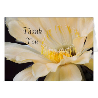 Charlemagne Echinopsis in bloom Thank you Card