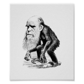 Charles Darwin As An Ape Poster