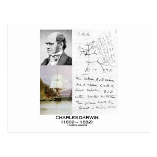 Charles Darwin (Darwin HMS Beagle Phylogenetics) Postcard