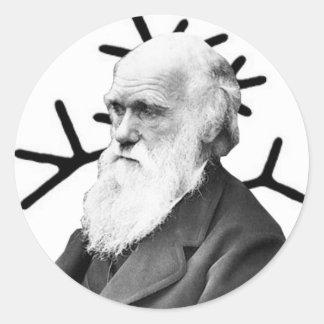 Charles Darwin Round Sticker