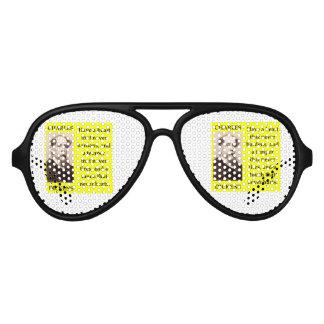 charles dickens aviator sunglasses