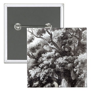 Charles II  Hidden in the Oak Tree 2 Inch Square Button