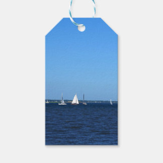 Charleston Battery Pack Of Gift Tags