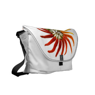 Charleston Hot Pepper Color Wheel Commuter Bag