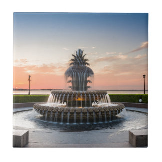 Charleston South Carolina Pineapple Fountain Tile