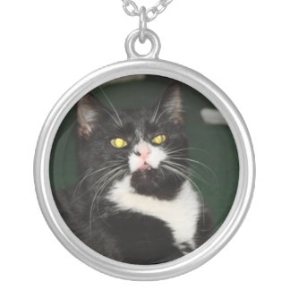 Charli Cat Attitude Silver Plated Necklace