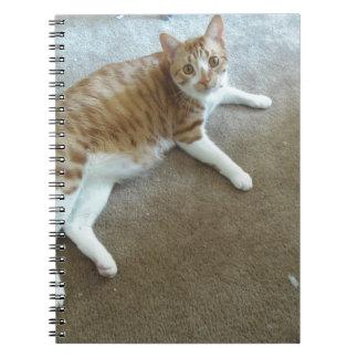 charlie notebook