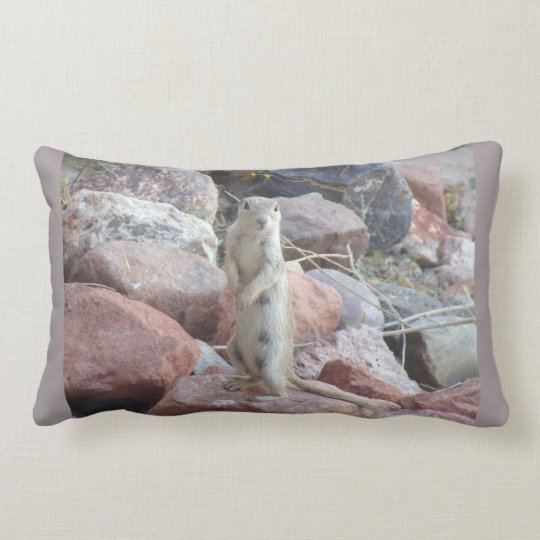Charlie on Sedona Rock Accent Lumbar Pillow