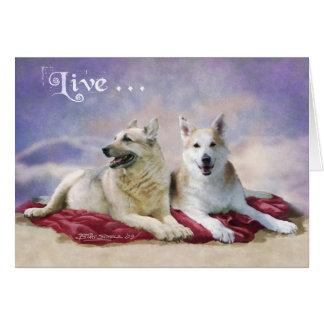 Charlie&Shiva Card