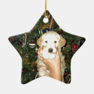 Charlie The GoldenDoodle Puppy on Christmas Ceramic Ornament