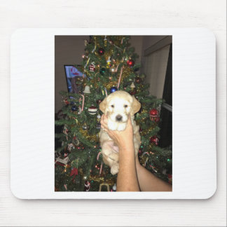 Charlie The GoldenDoodle Puppy on Christmas Mouse Pad